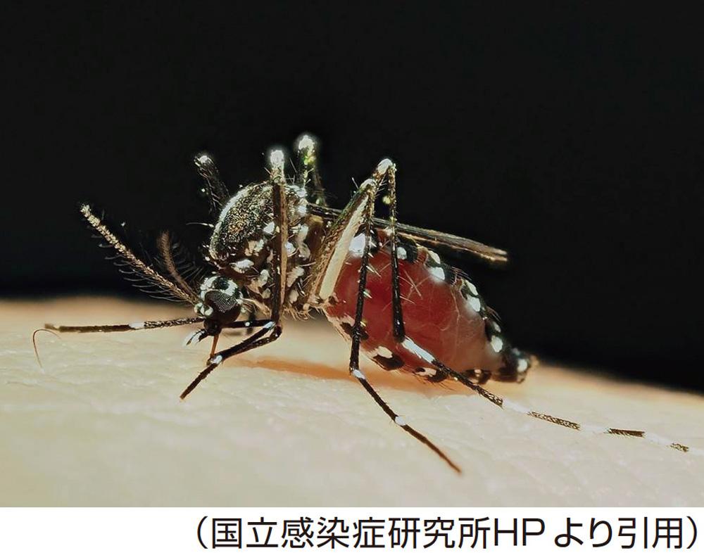 ウイルス ダニ 中国